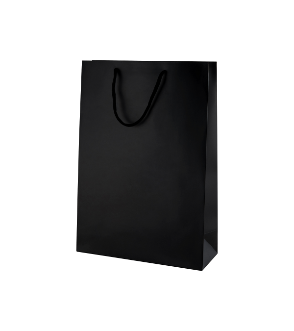 Black Matt Boutique Paper Carrier Bags with Rope Handles (Medium Tall) 25cm wide