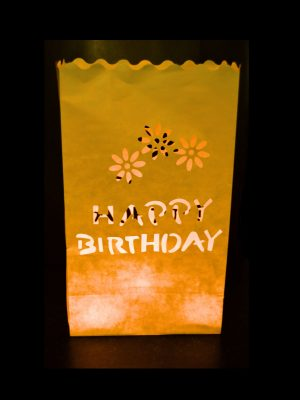 "Pack of 10 ""Happy Birthday Design"" Paper Candle Bags - Thepaperbagstore™"