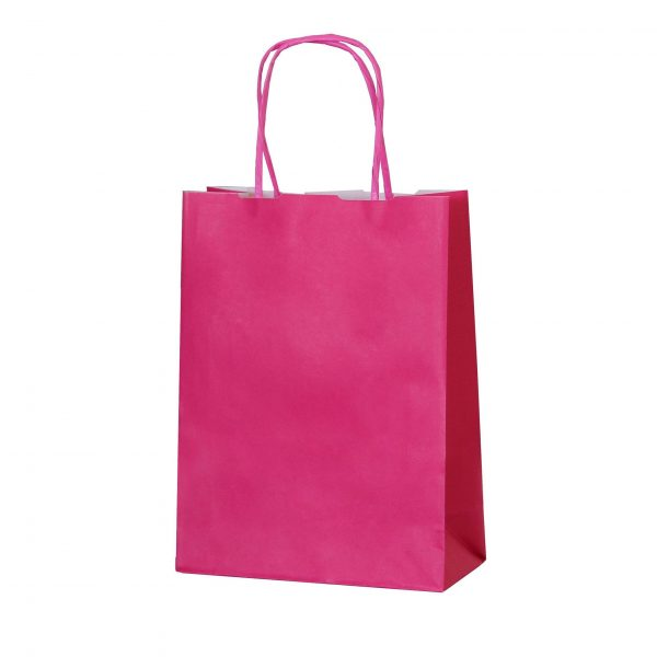 Fuchsia small paper gift bags with handle