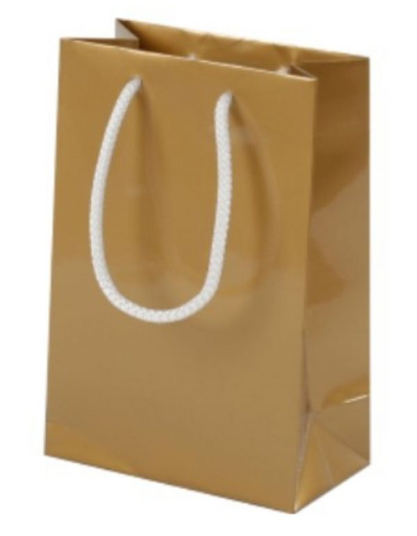 gold_glossy_party_bag