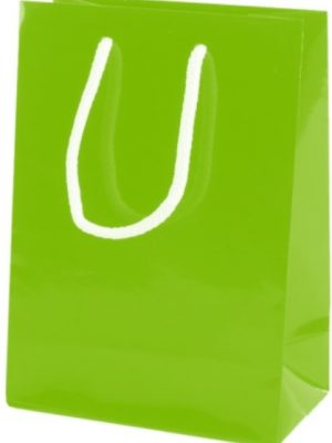 Green Gloss Paper Party Bags with Rope Handles