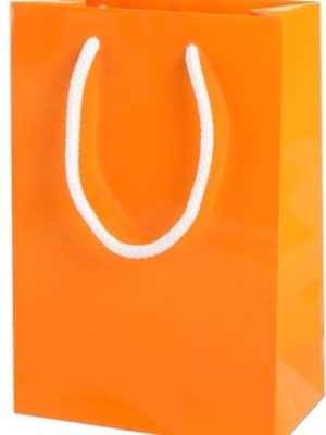 Orange Gloss Paper Party Bags with Rope Handles
