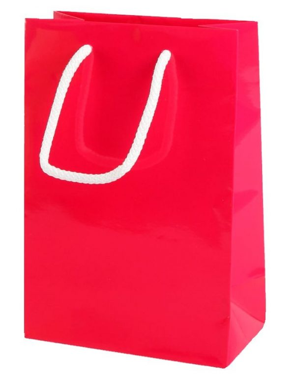 Hot Pink Gloss Paper Party Bags with Rope Handles