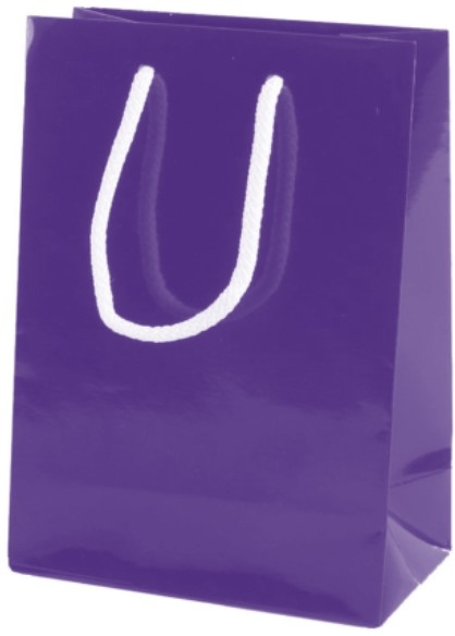 Purple Gloss Paper Party Bags with Rope Handles
