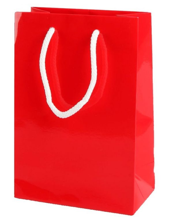 Red Gloss Paper Party Bags with Rope Handles