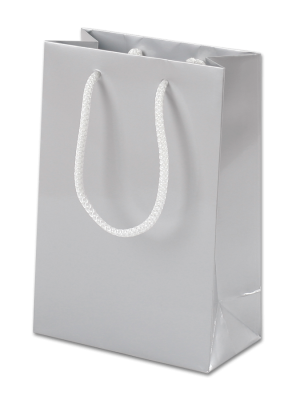 Silver Gloss Paper Party Bags with Rope Handles