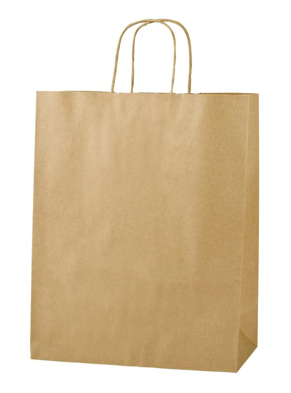 Brown Twist Handle Paper Carrier Bags - Size Medium 25 x 11 x 31cms
