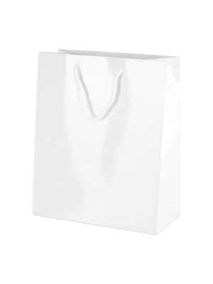 White Gloss Boutique Paper Carrier Bags with Rope Handles (Medium) 20cm wide