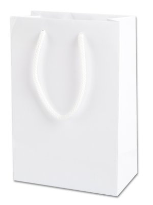 White Gloss Paper Party Bags with Rope Handles