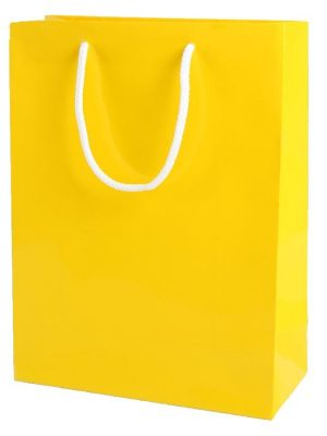 Yellow Gloss Paper Party Bags with Rope Handles