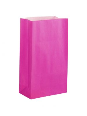 Hot Pink Paper Party Bag