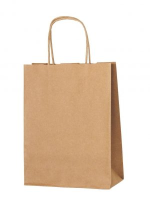 Brown small paper gift bag with handle