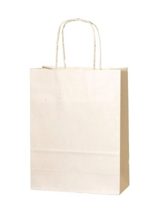 Cream/Ivory small paper gift bag with handle