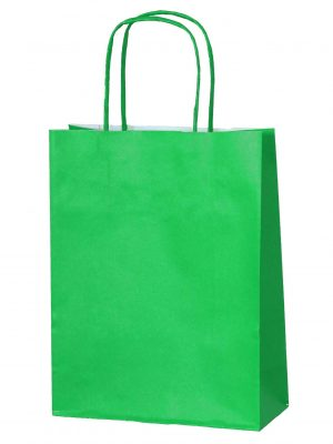 Green small paper gift bag with handle