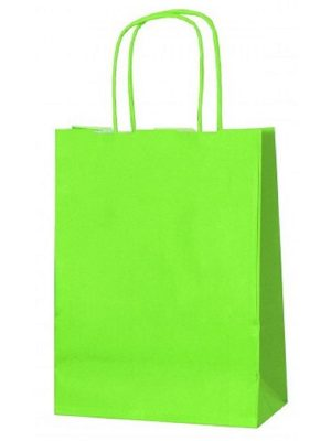 Light Green small paper gift bag with handle
