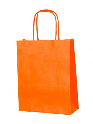 Orange small paper gift bag with handle