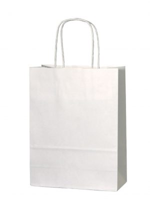 White small paper gift bag with handle